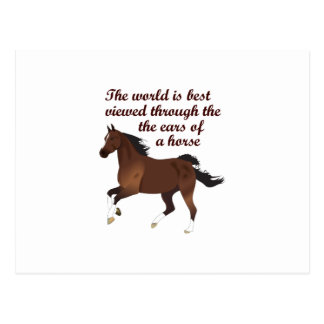THROUGH THE EARS OF A HORSE POST CARD