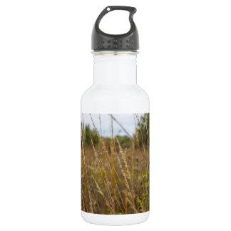 Through The Grass Tops 532 Ml Water Bottle