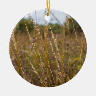 Through The Grass Tops Ceramic Ornament
