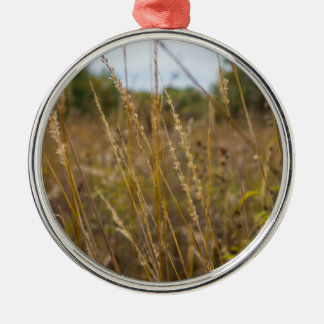 Through The Grass Tops Metal Ornament
