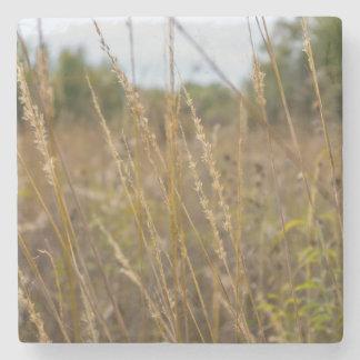 Through The Grass Tops Stone Coaster