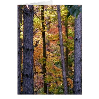 Through The Trees Notecard