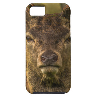 Thug deer case for the iPhone 5