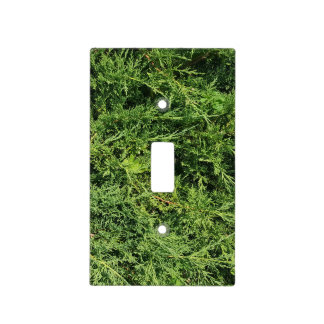 Thuja tree photo background light switch cover
