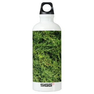Thuja tree photo background water bottle