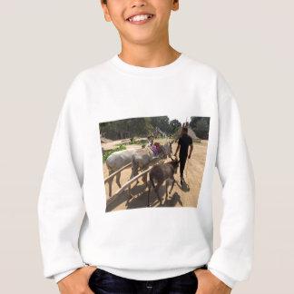 thumb_IMG_6915_1024 Sweatshirt