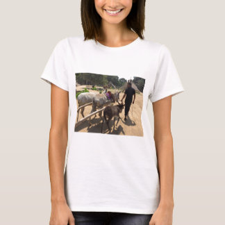 thumb_IMG_6915_1024 T-Shirt