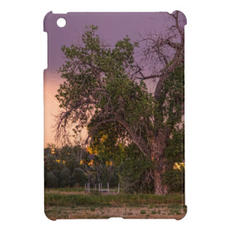 Thunderstorm_In_The_Woods Case For The iPad Mini
