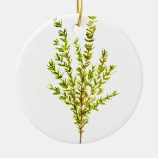 Thyme herbs Botanical herb Round Ceramic Ornament