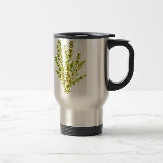 Thyme herbs Botanical herb Travel Mug