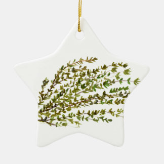 Thyme herbs kitchen art watercolour painting ceramic star ornament