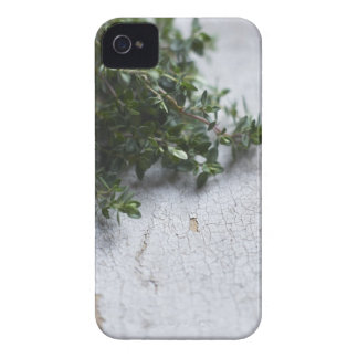 Thyme on old wooden table iPhone 4 Case-Mate cases