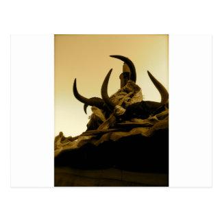 Tibetan Horns Postcard