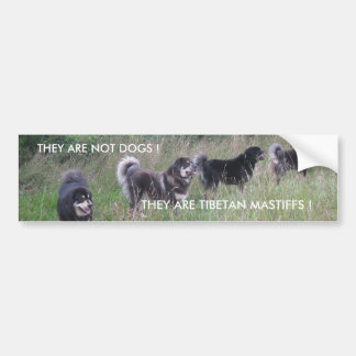 TIBETAN MASTIFF BUMPER STICKER