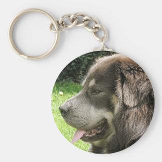 tibetan mastiff.png keychain