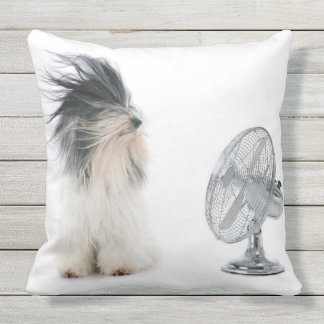 Tibetan terrier and his fan throw pillow