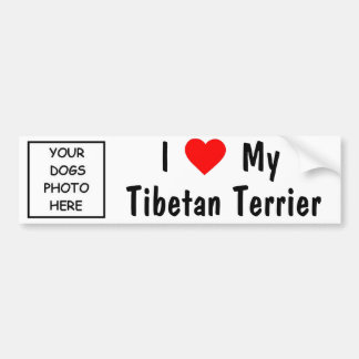 Tibetan Terrier Bumper Sticker