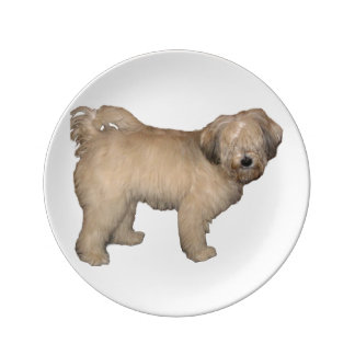 Tibetan-terrier full porcelain plates