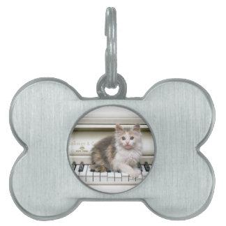 Tickling The Ivorys Kitten Pet ID Tags