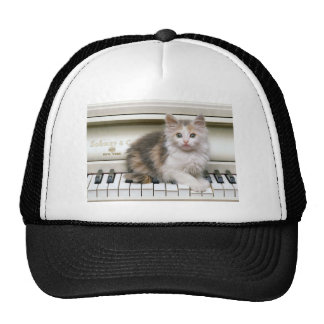 Tickling The Ivorys Kitten Trucker Hat