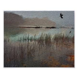 Tidal Marsh Cape Cod Photo Print