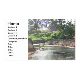 Tidal Pool Profile Card Pack Of Standard Business Cards