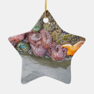 Tidal Pool, Ruby Beach, Olympic National Park Ceramic Ornament