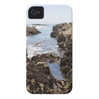 Tide Pool iPhone 4 Case