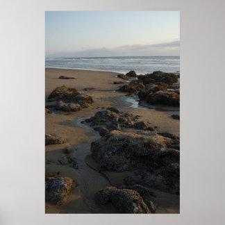tide pools empty poster