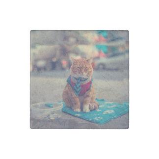 Tie Beige Cat Sitting Begging Stone Magnets