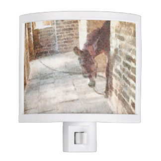 Tied donkey in brick structure nite lights