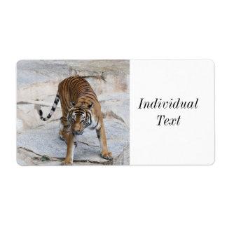 Tiger 1216 AJ