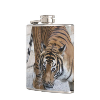 Tiger 1216 AJ Hip Flask