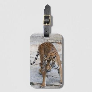 Tiger 1216 AJ Luggage Tag