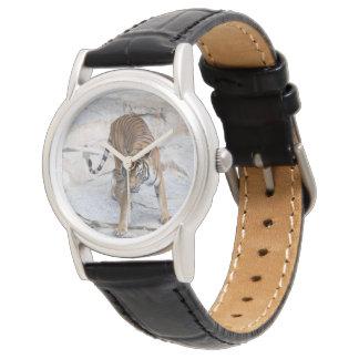Tiger 1216 AJ Watch