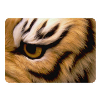 tiger-13 carton d'invitation  12,7 cm x 17,78 cm