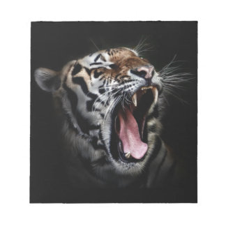 Tiger 14 cm x 15.2 cm Notepad - 40 pages