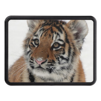 Tiger_2015_0114 Trailer Hitch Cover