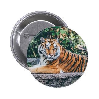 Tiger 2 Inch Round Button