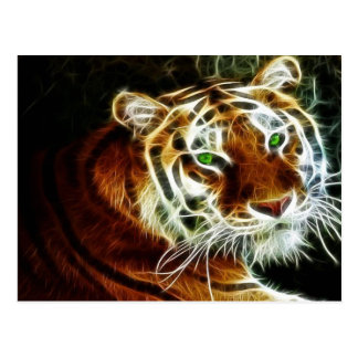 Tiger 3 postcard