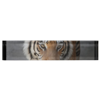 tiger-54 name plate