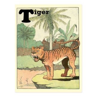 Tiger Alphabet Postcard