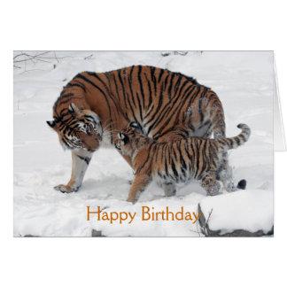 Tiger and cub in snow photo custom birthday card