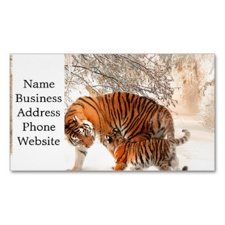 Tiger and cub - tiger business card magnet