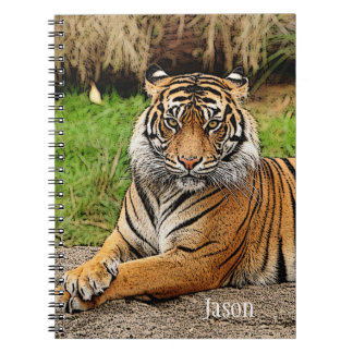 Tiger and Name School Notebook