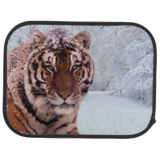 Tiger and Snow Car Liners