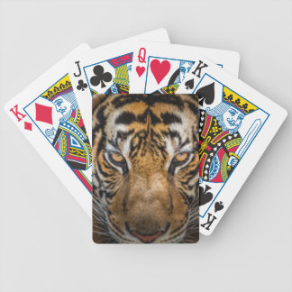 Tiger Animal Print Bicycle Playing Cards