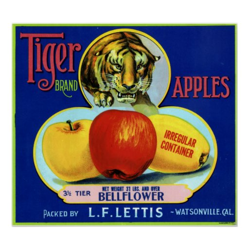 Tiger Apples Watsonville California Print