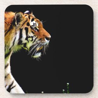 Tiger Approaching - Wild Animal Artwork Coaster