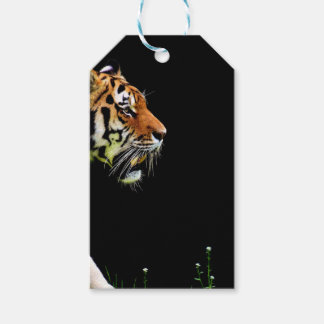 Tiger Approaching - Wild Animal Artwork Gift Tags